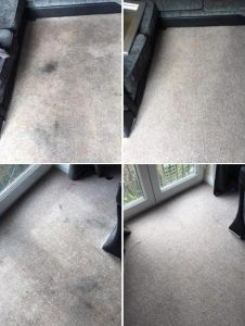CARPET & UPHOLSTERY CLEANS
