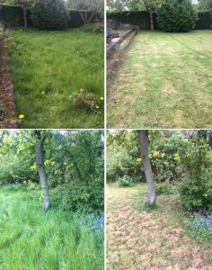 GROUNDS & GARDEN MAINTENANCE